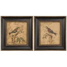 Uttermost Set of 2 Colorful Birds Hand-Painted Wall Art