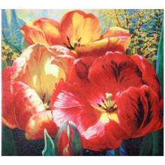 "Tulip Trio Wrapped Canvas Print 36"" Wide Wall Art"