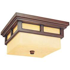 "Cottage Grove 13"" Wide Indoor - Outdoor Ceiling Light"
