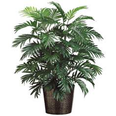 Areca Palm in Decorative Planter
