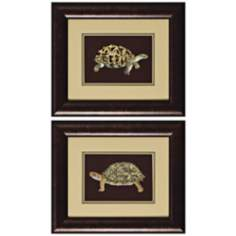 Set of Two Tortoise I & II Framed Wall Art