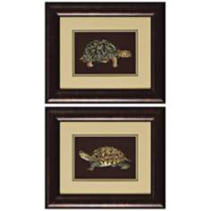 Set of Two Tortoise III & IV Framed Wall Art