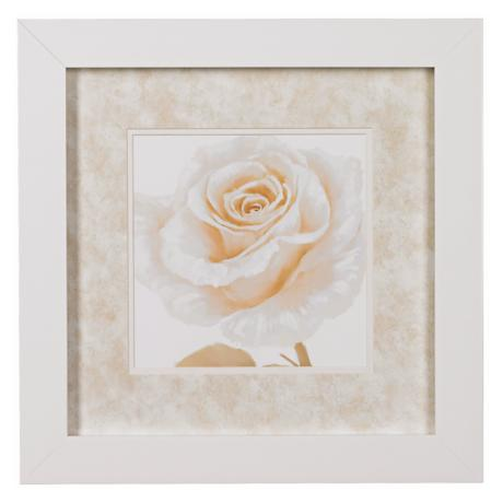 "Rose Close Ups B Framed Print 16"" Square Wall Art"