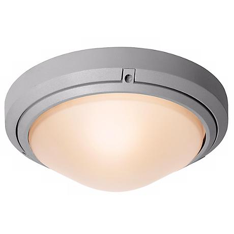 Oceanus Satin Nickel Outdoor Ceiling or Wall Light