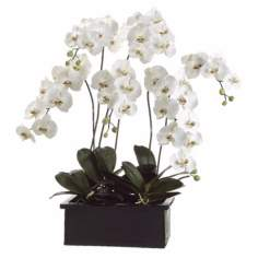 White Orchids in Terra Cotta Pot Faux Flower Arrangement