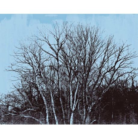 "Walk in the Park Two Giclee 40"" Wide Canvas Wall Art"