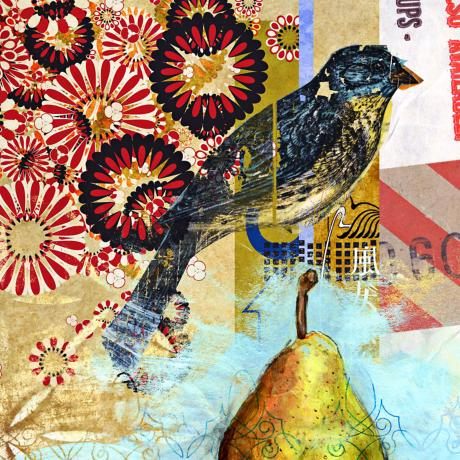 "Studio Collage Bird Giclee 36"" Square Canvas Wall Art"