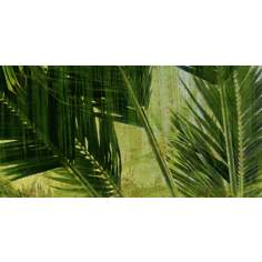 "Palms Triptych Bottom Giclee 36"" Wide Canvas Wall Art"