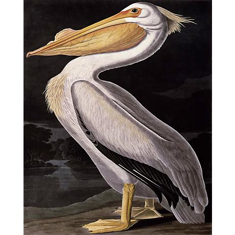 "American White Pelican Giclee 40"" High Canvas Wall Art"