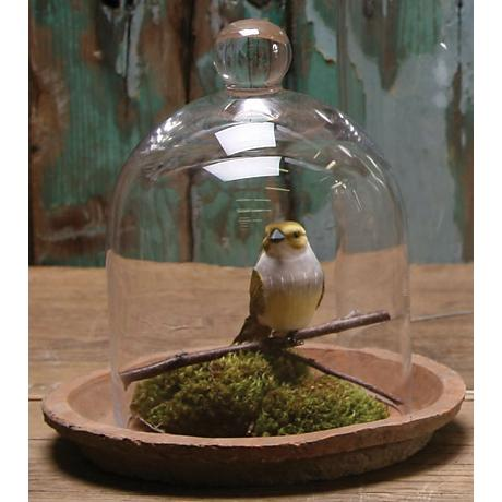 "Small Bell Jar 8"" High Glass Dome"