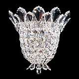 "Schonbek Trilliane 10 1/2"" High Swarovski Crystal Sconce"