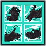 "Kinetic Cat Teal 31"" Square Black Giclee Wall Art"