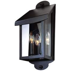 "Alpine Collection 16 1/4"" High Outdoor Wall Light"