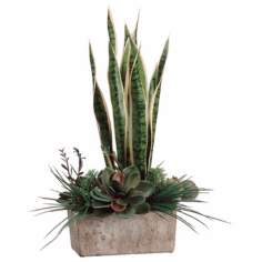 Green & Pearl Sanseveria and Succulent Garden Arrangement