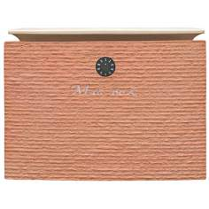 Dune Orange Finish Locking Mailbox