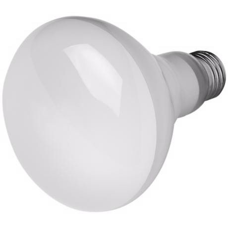 14-Watt BR-30 CFL Flood Light Bulb