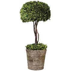 "Uttermost 33"" High Preserved Boxwood Tree Topiary"