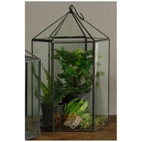 "Pierre Large 14"" High Hexagon Terrarium"