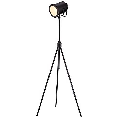 Lite Source Directeur Dark Bronze Floor Lamp