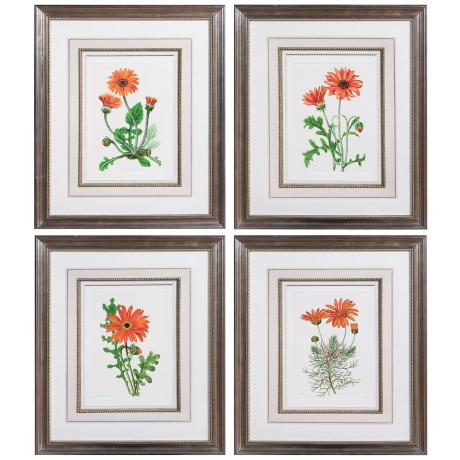 Set of 4 Uttermost Orange Flowers I-IV Framed Wall Art