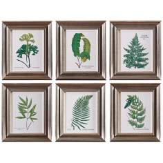 Uttermost Set of 6 Ferns I-VI Botanical Wall Art Prints
