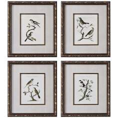 Uttermost Set of 4 Nozeman Birds I-IV Framed Wall Art