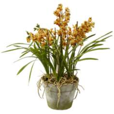 "Jane Seymour 31"" Yellow Cybidium Orchids in Clay Pot"