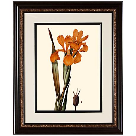 "Warm Floral A 23 3/4"" High Framed Botanical Wall Art"