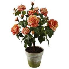 "Jane Seymour 27"" High Peach Potted Silk Rose Plant"