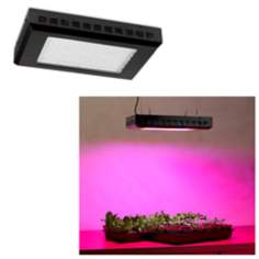 Tesler Rectangular 600 Watt LED Indoor Grow Light