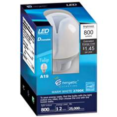 12 Watt Dimmable LED Omni-Directional Light Bulb