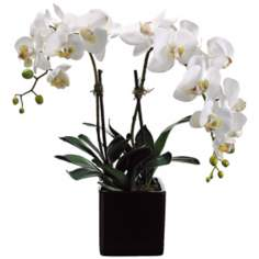 "White Phalaenopsis 22"" High Faux Orchids in Square Pot"