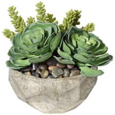Succulent Arrangement in Small Stone Bowl