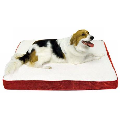 Happy Hounds Oscar Crimson Medium Orthopedic Dog Bed