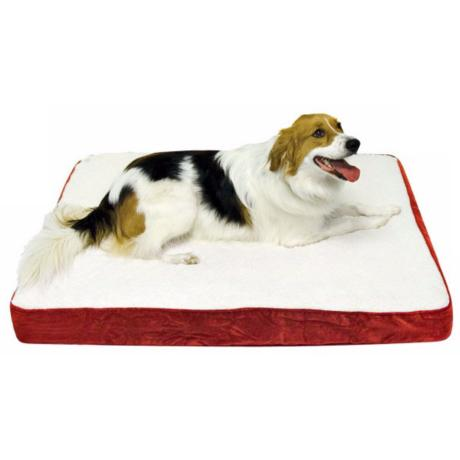 Happy Hounds Oscar Crimson Small Orthopedic Dog Bed