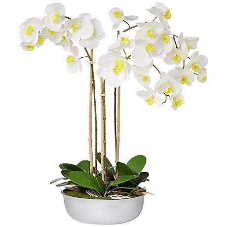 "Triple White Moth 32"" Wide Orchids in Silver Ceramic Pot"
