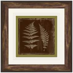 "Fern Imprint 14 3/4"" Square Framed Botanical Wall Art"