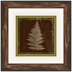 "Fern Imprint II 14 3/4"" Square Framed Botanical Wall Art"
