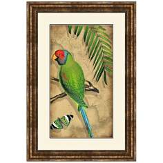 "Parrota I 25 1/2"" High Framed Bird Wall Art"