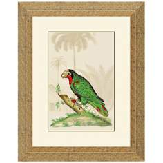 "Parrot Italian I 19 1/2"" High Framed Bird Wall Art"