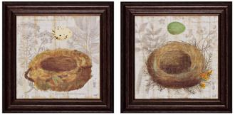 "set of 2 nest i/ii 16"" square bird's nest wall art (x2368)"