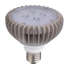 10 Watt PAR30 Dimmable LED Light Bulb