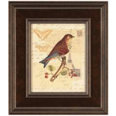 "Naturalist's Collage II Framed 16"" High Bird Wall Art"