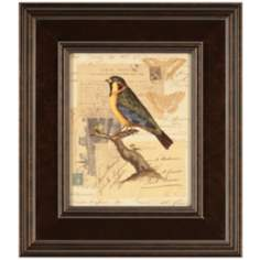 "Naturalist's Collage III Framed 16"" High Bird Wall Art"