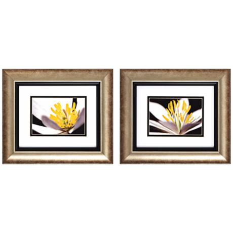 "Set of 2 White Poccoon I/II 14"" Wide Floral Wall Art"