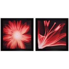 "Set of 2 Lilium/Gerbera 30"" Square Flower Wall Art"