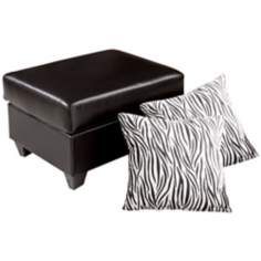 Contemporary Storage Ottoman and Pillow Set