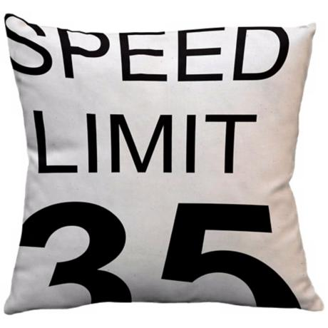 "Street Smart Speed Limit 18"" Square Down Throw Pillow"