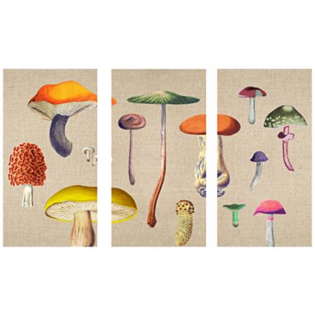 Mushroom Triptych Set of 3 Canvas Wall Art