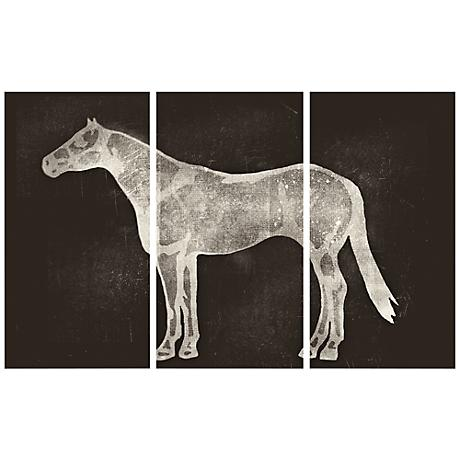 Horse X-Ray Triptych Set of 3 Canvas Wall Art